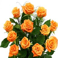 Cherished Bouquet of Orange Roses