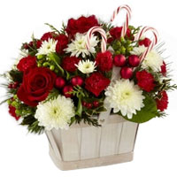 Stimulating Red Roses with White Carnations