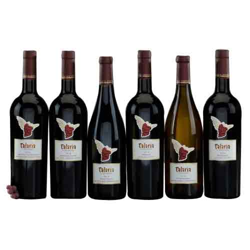 Total Elegance Wine Gift Hamper for X-mas