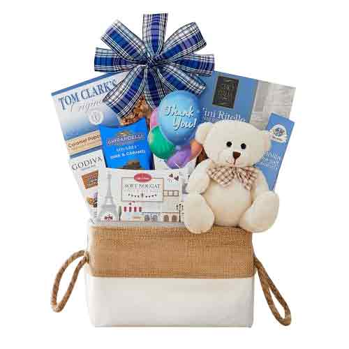 Finest Gourmet Snacks N Teddy Gift Package for Xmas