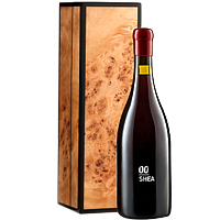 Classic Gift of 00 Shea Vineyard Pinot Noir in Handcrafted Burlwood Box