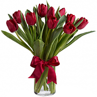 Fresh-Cut Red Tulips in a Glass Vase <br><br>