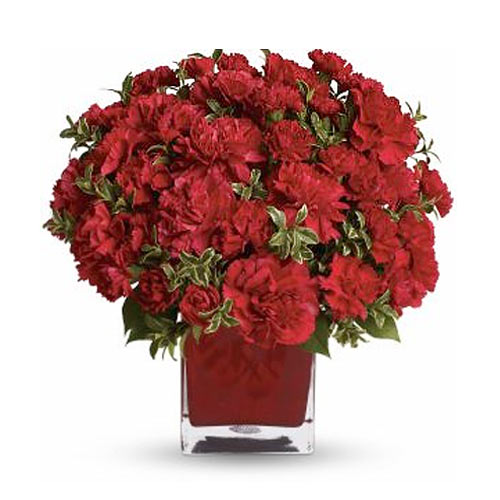 Exotic Red Carnations kept in a Colorful Cube Vase