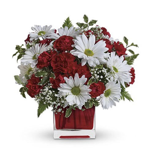 Gorgeous Collection of White and Red Florals placed in a Red Color Cube Vase