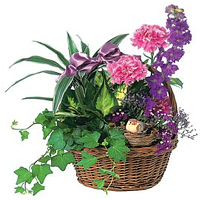 Bright Colorful Florals nd Greens placed in a Basket for V-Day<br>