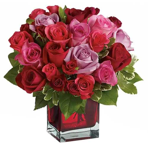 Magnificent Red N Pink Roses decked in a Glass Cube Vase