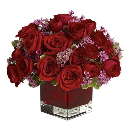 Stunning Red Color Roses arranged in a Red Glass Cube Vase