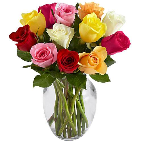 Aromatic Dozen of Long Stemmed Assorted Roses