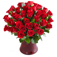 Exciting Three Dozen Long Stemmed Red Roses