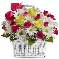 Charming Daisy Dreams Basket
