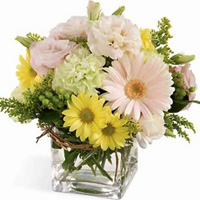 Lovely Arrangement Floral Festival Bouquet